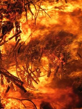 fire-1629975_1280